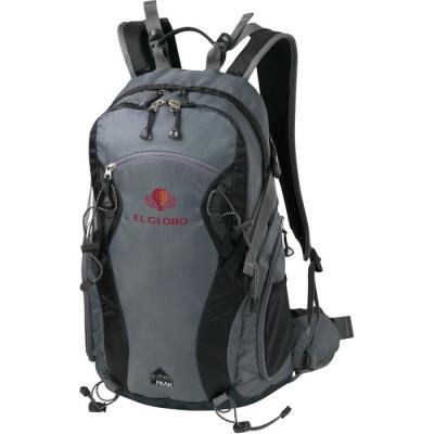 Urban Peak® 35L Daypack